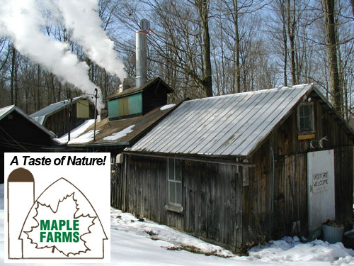 pure maple production